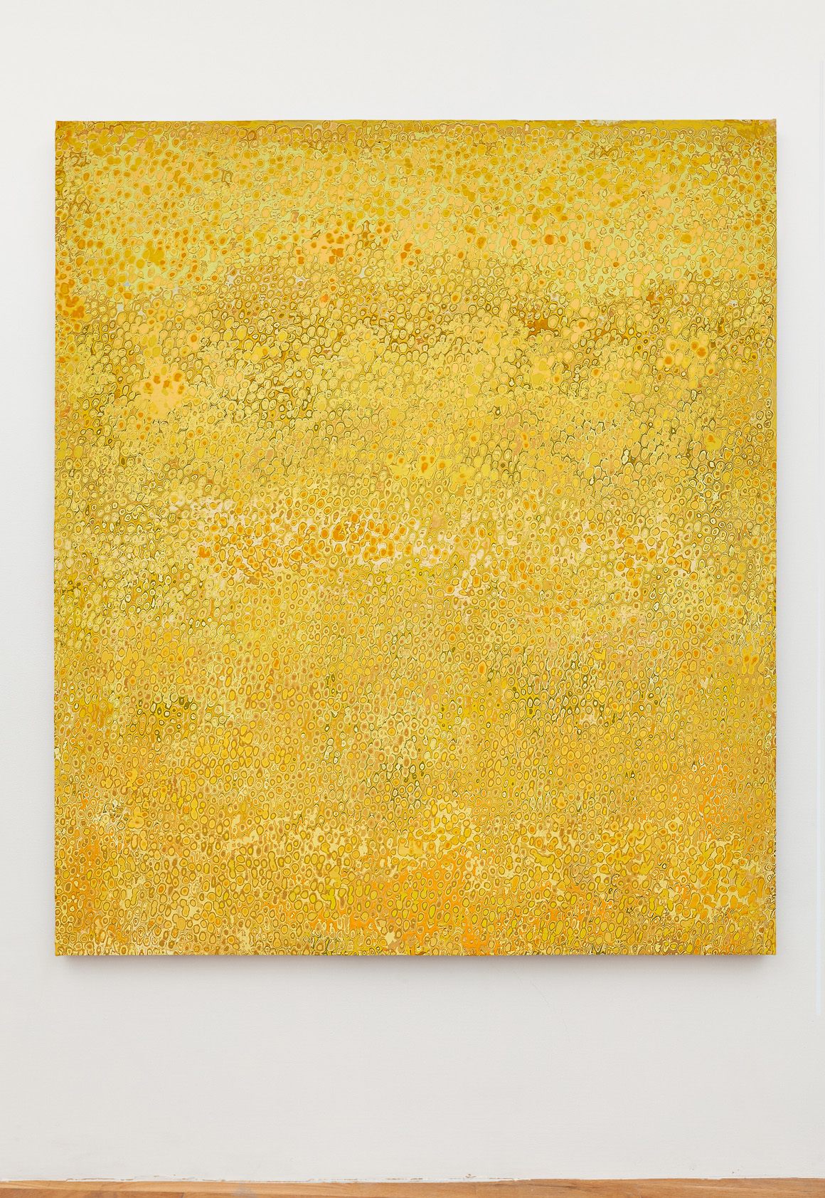 "<p><span class=""name"">Andrew Jensdotter</span><br><em>Yellow 70</em><span class='media'>Carved latex on canvas</span>80 x 68 in (203.2 x 172.7 cm)<br>2018<br></p>"