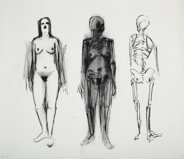 <p><em>Visible Woman</em><span class='media'>charcoal on paper</span>84 x 72 in  (213.4 x 182.9 cm)<br>2008<br><a class='inquire' href='mailto:info@gildargallery.com?subject=Artwork Inquiry WSTO0018&body=I am interested in finding out more about Visible Woman by William Stockman'>Inquire</a></p>