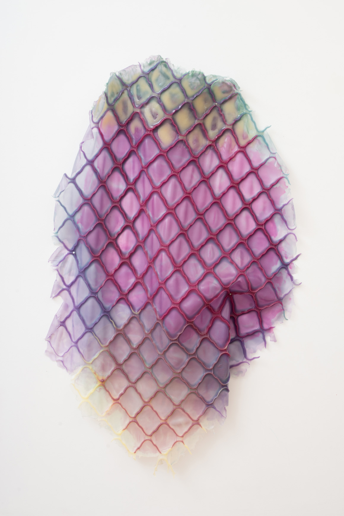 <p><em>Lash (Fragile Terms Loom Within)</em><span class='media'>Silicone</span>Size Variable: Approximately 60 x 52in | 142 x 152.5cm<br>2018<br></p>