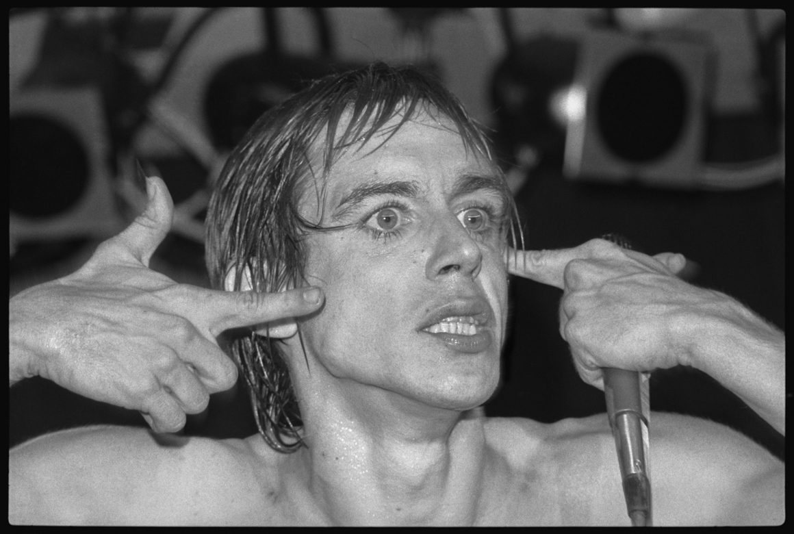 "<p><span class=""name"">Richard Peterson</span><br><em>Iggy Pop 2, 1978</em><span class='media'>pigment ink archival print</span>17 x 22 in (43.2 x 55.9 cm)<br>Edition of Edition of Edition of 11<br>1978<br></p>"