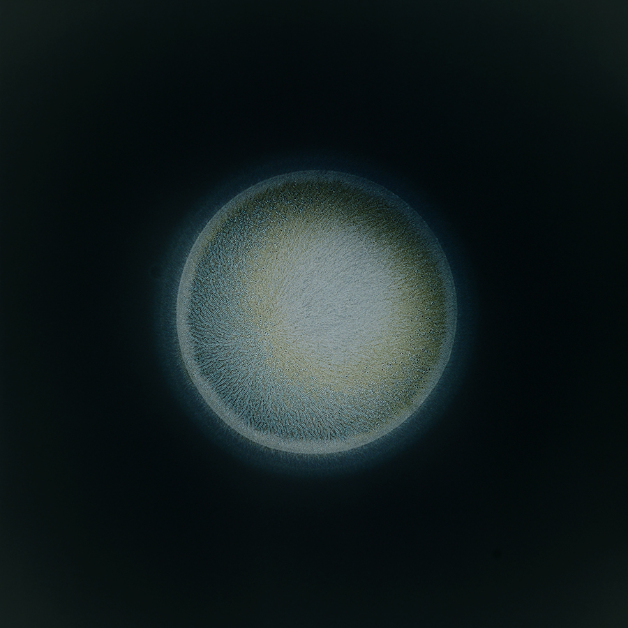 """<p><span class=""""name"""">Sarah Schönfeld</span><br><em>All You Can Feel / Planets, Acetylcholine</em><span class='media'>Substance on photo negative enlarged as C-Print</span>27 1/2 x 27 1/2 in (70 x 70 cm)<br>2013<br><a class='inquire' href='mailto:info@gildargallery.com?subject=Artwork Inquiry SSCH0011&body=I am interested in finding out more about All You Can Feel / Planets, Acetylcholine by Sarah Schönfeld'>Inquire</a></p>"""